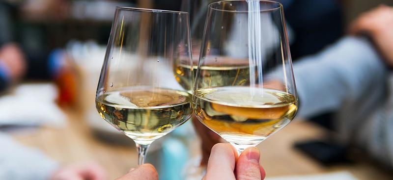 Catalan Wine Tour em Barcelona