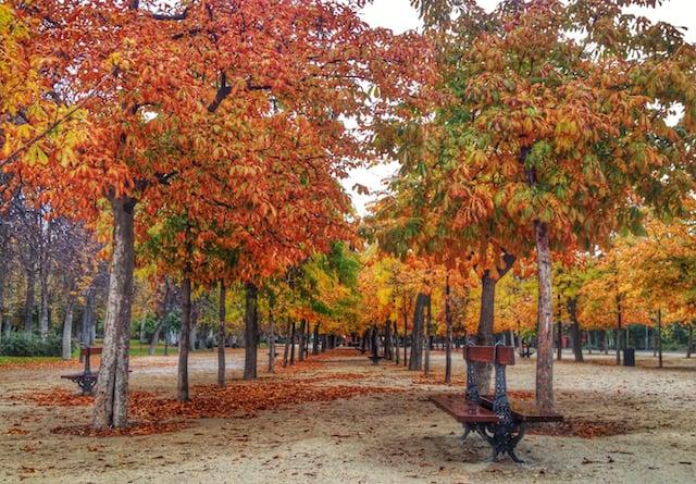 Outono em Madri