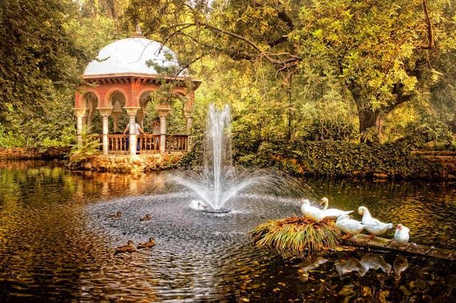 Parque Maria Luiza no outono