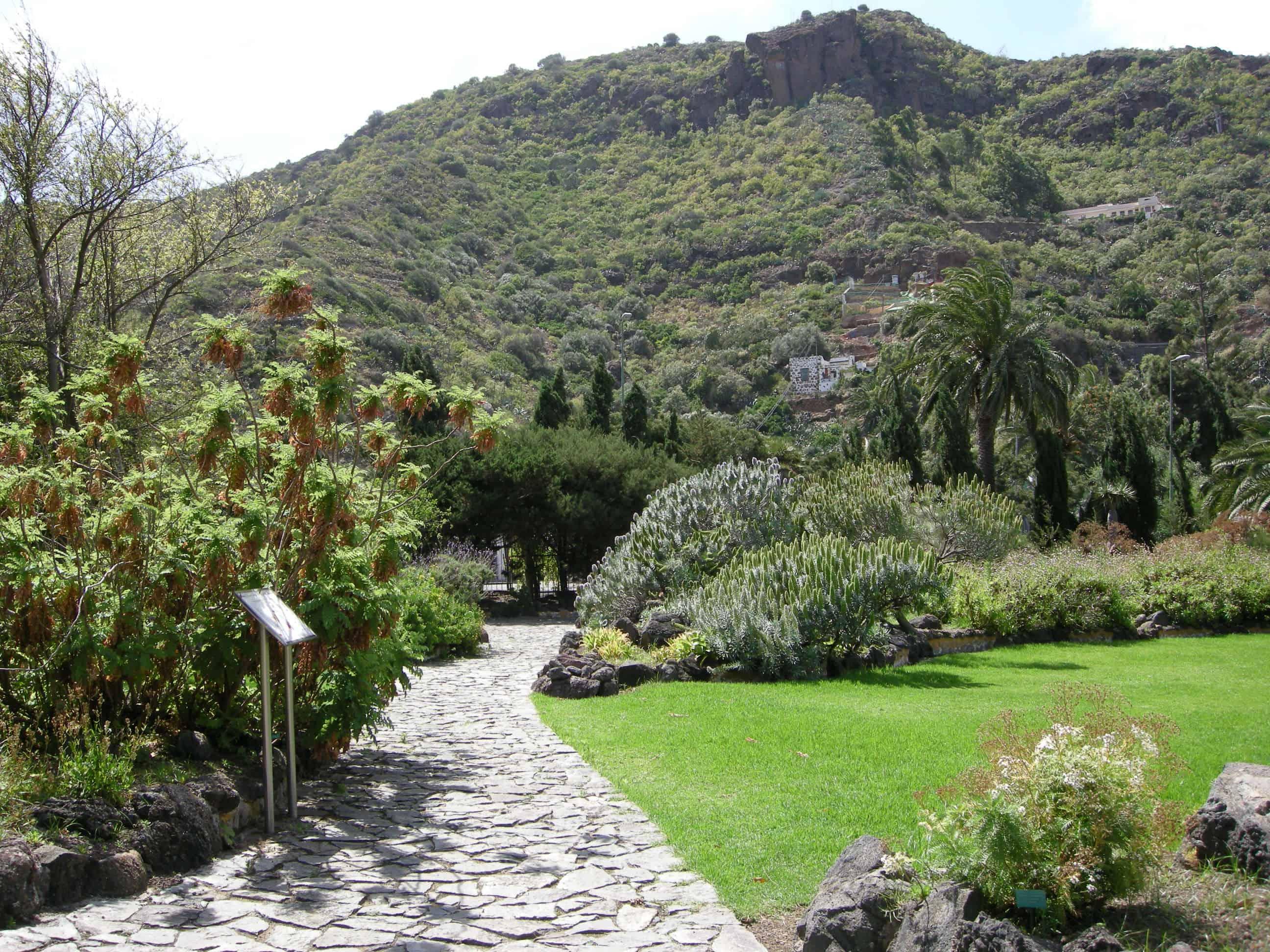Jardin Canario em Gran Canaria