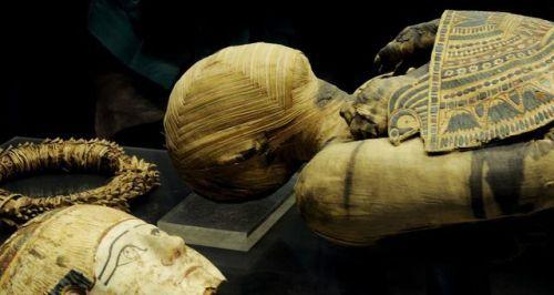 Coleção de Múmias